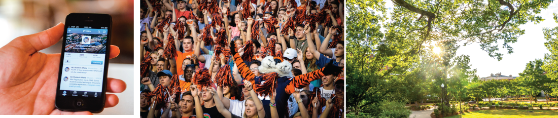 banner image collage - hand holding cell phone, Aubie at a football game, Samford lawn